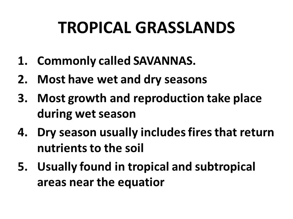 TROPICAL GRASSLANDS 1.Commonly called SAVANNAS.