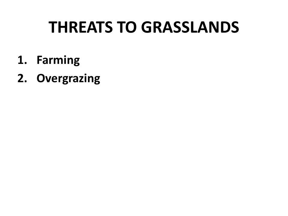 THREATS TO GRASSLANDS 1.Farming 2.Overgrazing