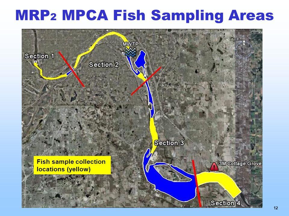 MRP 2 MPCA Fish Sampling Areas 12 Fish sample collection locations (yellow)