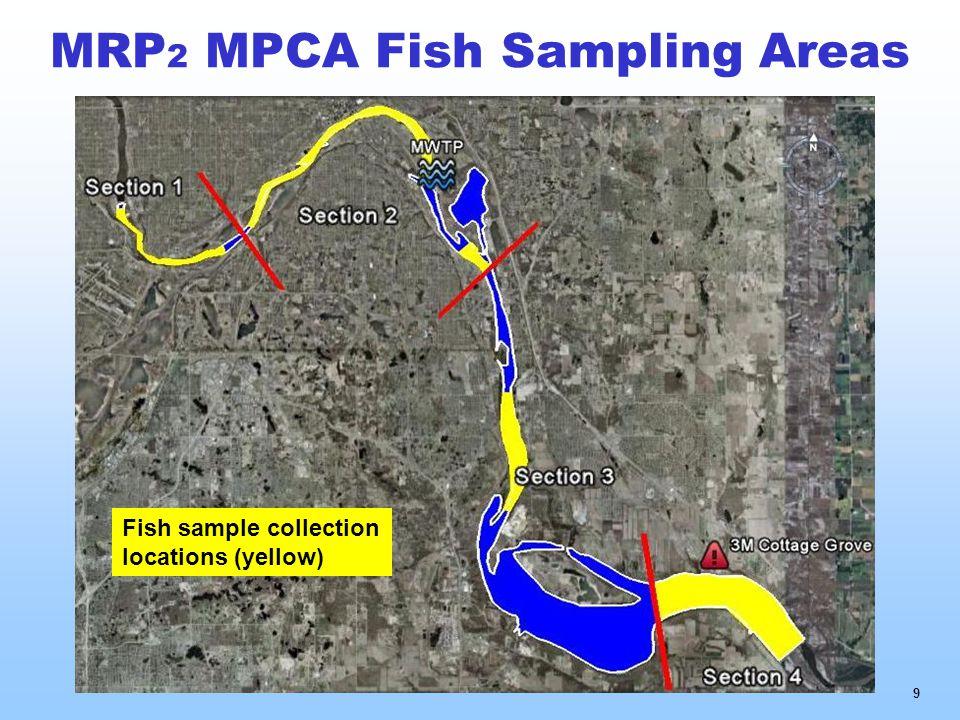 MRP 2 MPCA Fish Sampling Areas 9 Fish sample collection locations (yellow)