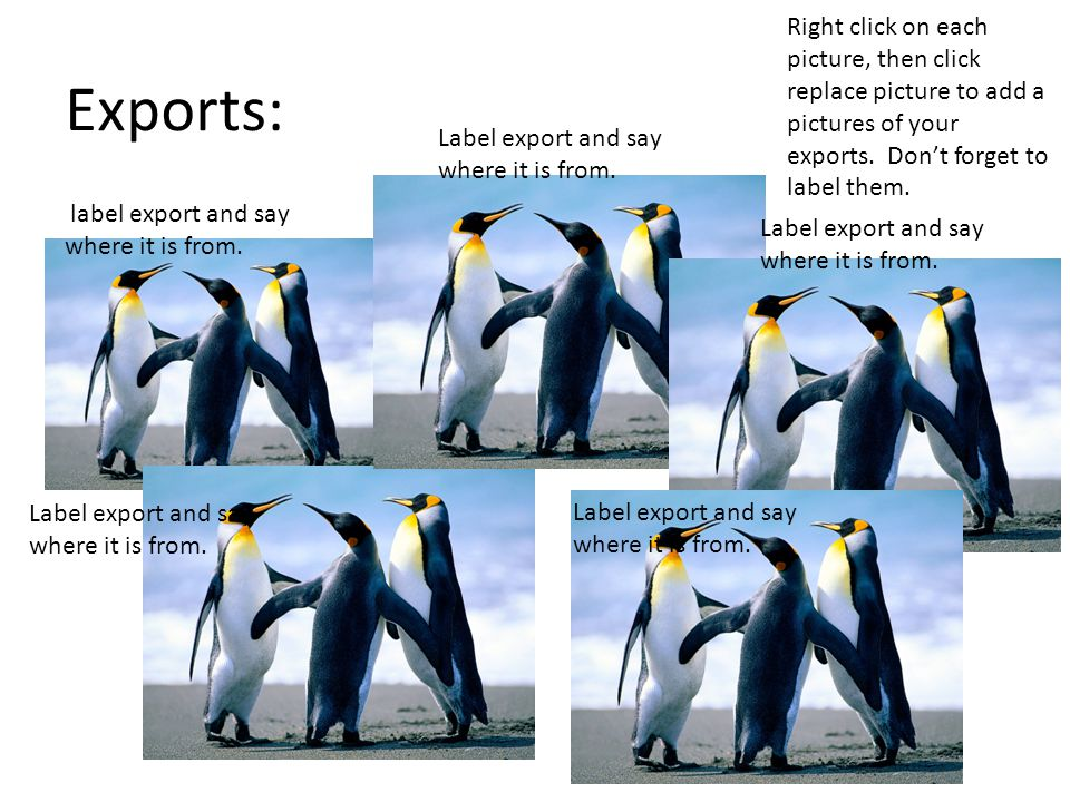Exports: label export and say where it is from. Label export and say where it is from.