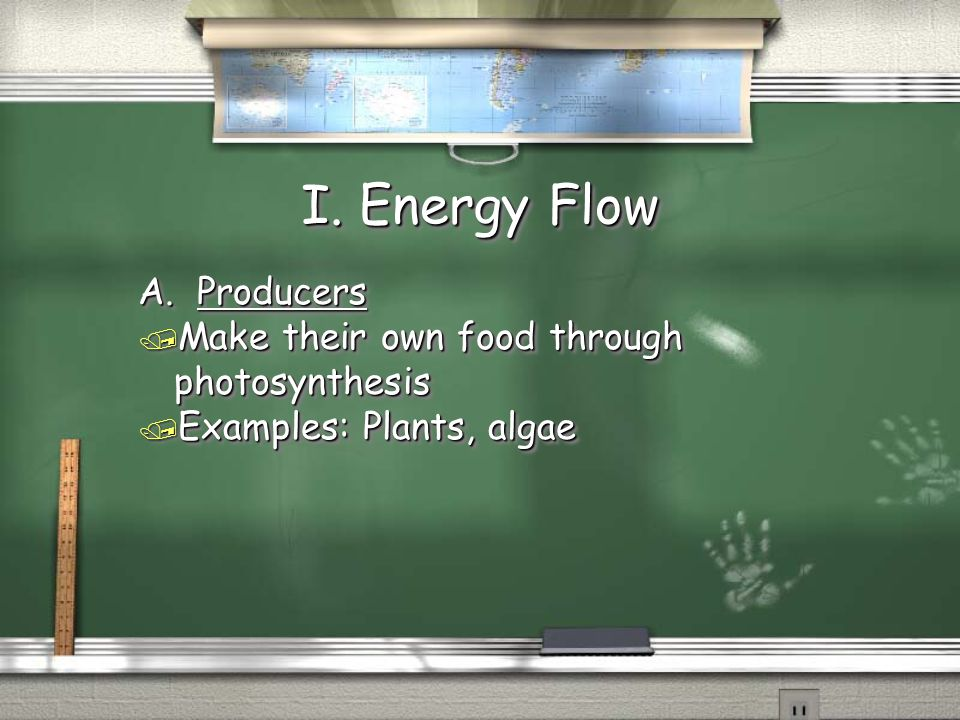 I. Energy Flow A. Producers / Make their own food through photosynthesis / Examples: Plants, algae A. Producers / Make their own food through photosyn