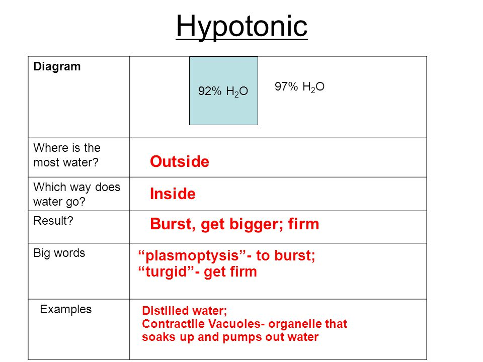 Hypotonic Diagram Where is the most water. Which way does water go.