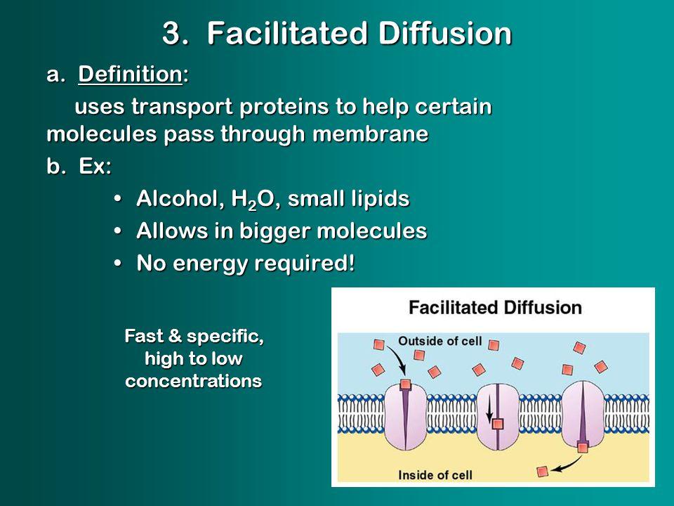 3. Facilitated Diffusion a.
