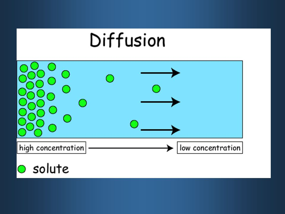 Osmosis _DIFFUSION_ ONLY.