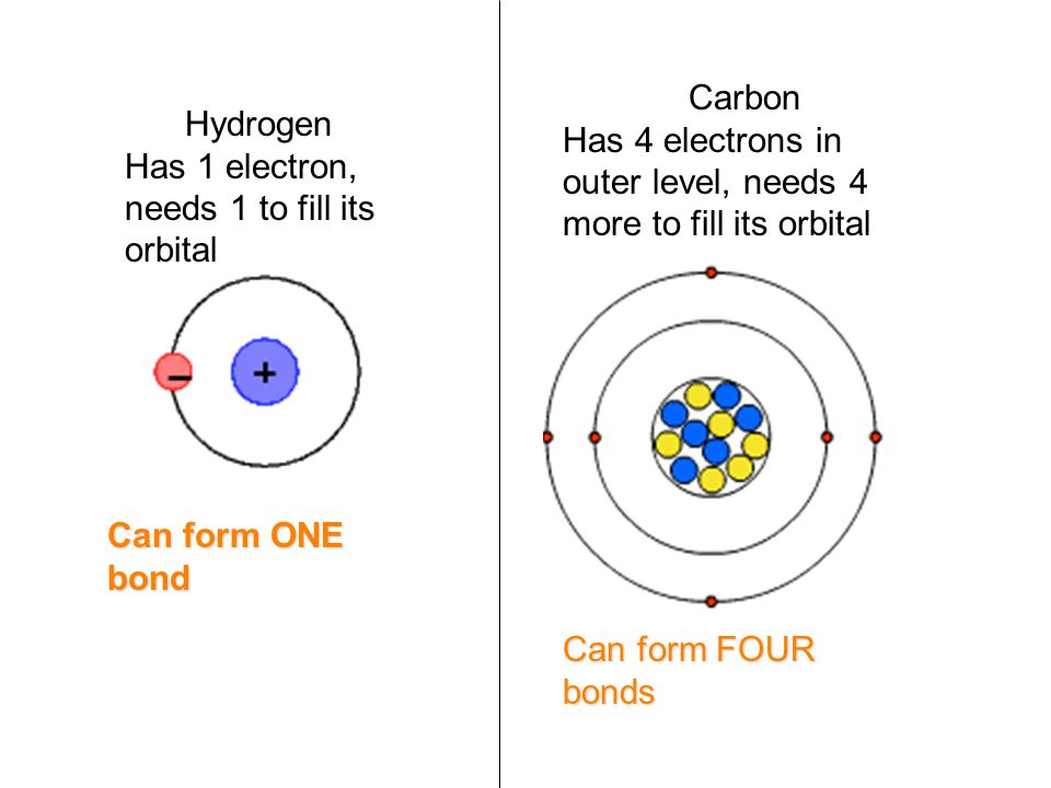 Hydrogen Has 1 electron, needs 1 to fill its orbital Carbon Has 4 electrons in outer level, needs 4 more to fill its orbital Can form ONE bond Can form FOUR bonds