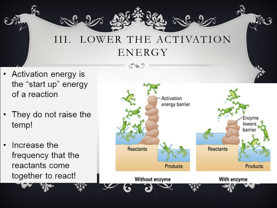 Free Energy Progress of the reaction Reactants Products Free energy of activation Without Enzyme With Enzyme Enzymes