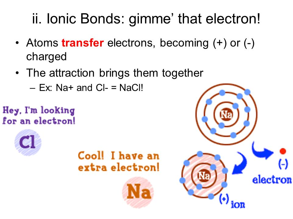 ii. Ionic Bonds: gimme' that electron! Atoms transfer electrons, becoming (+) or (-) charged The attraction brings them together –Ex: Na+ and Cl- = Na