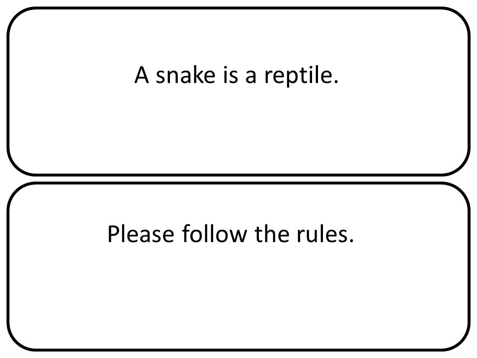 A snake is a reptile. Please follow the rules.