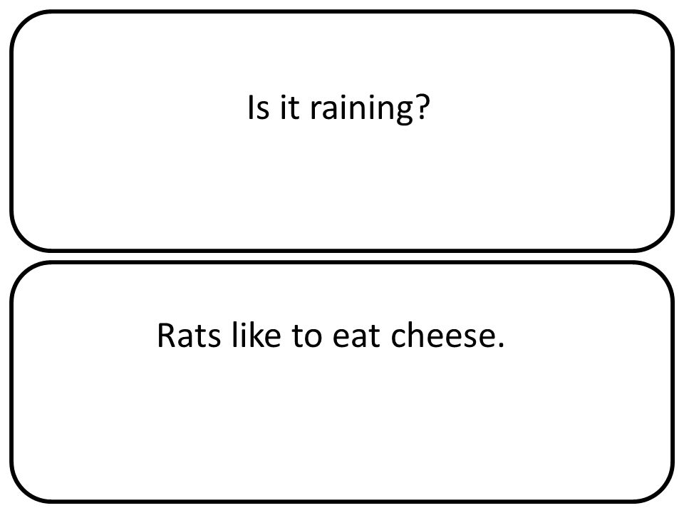 Is it raining Rats like to eat cheese.