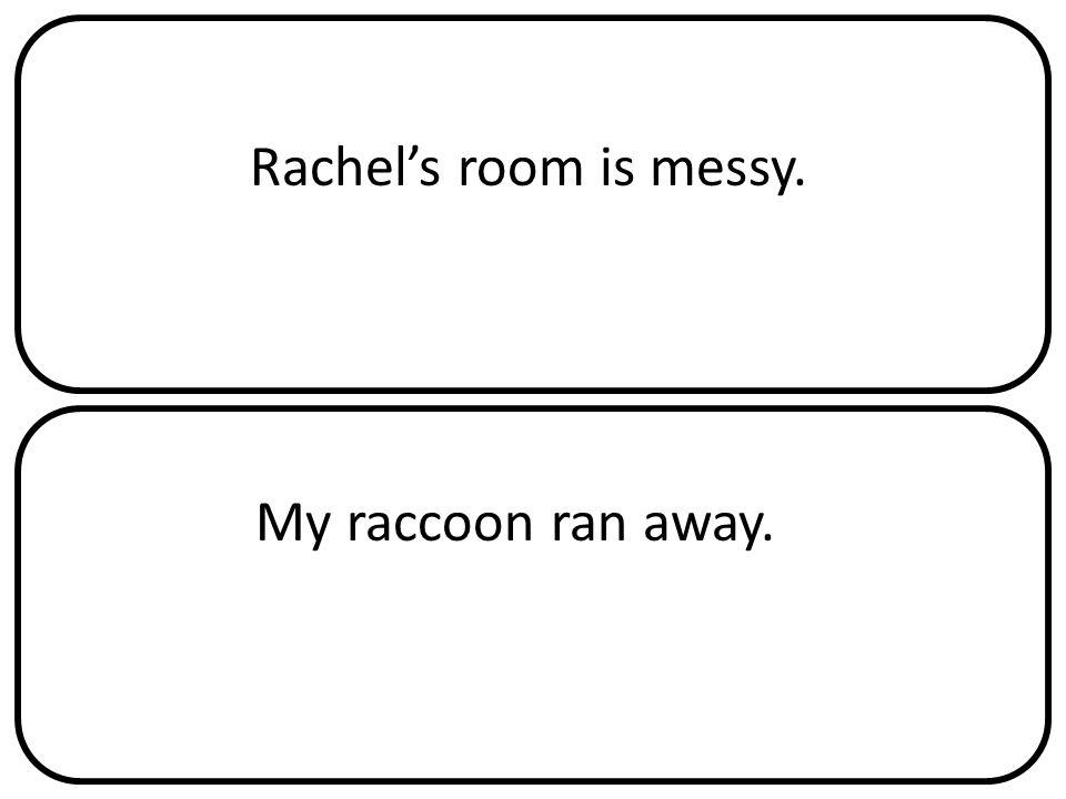 Rachel's room is messy. My raccoon ran away.