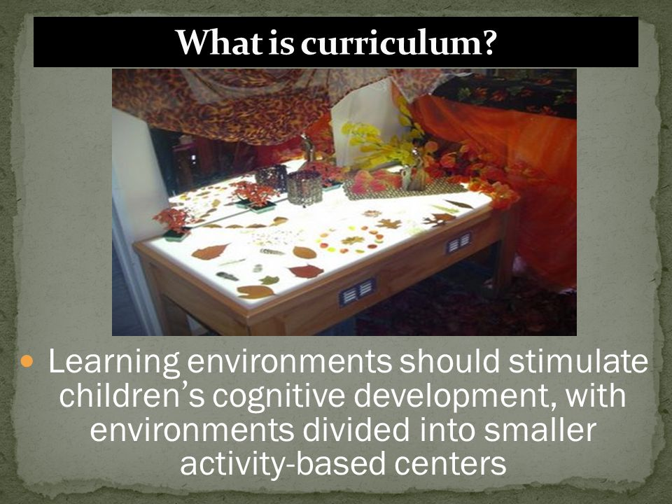 Learning environments should stimulate children ' s cognitive development, with environments divided into smaller activity-based centers
