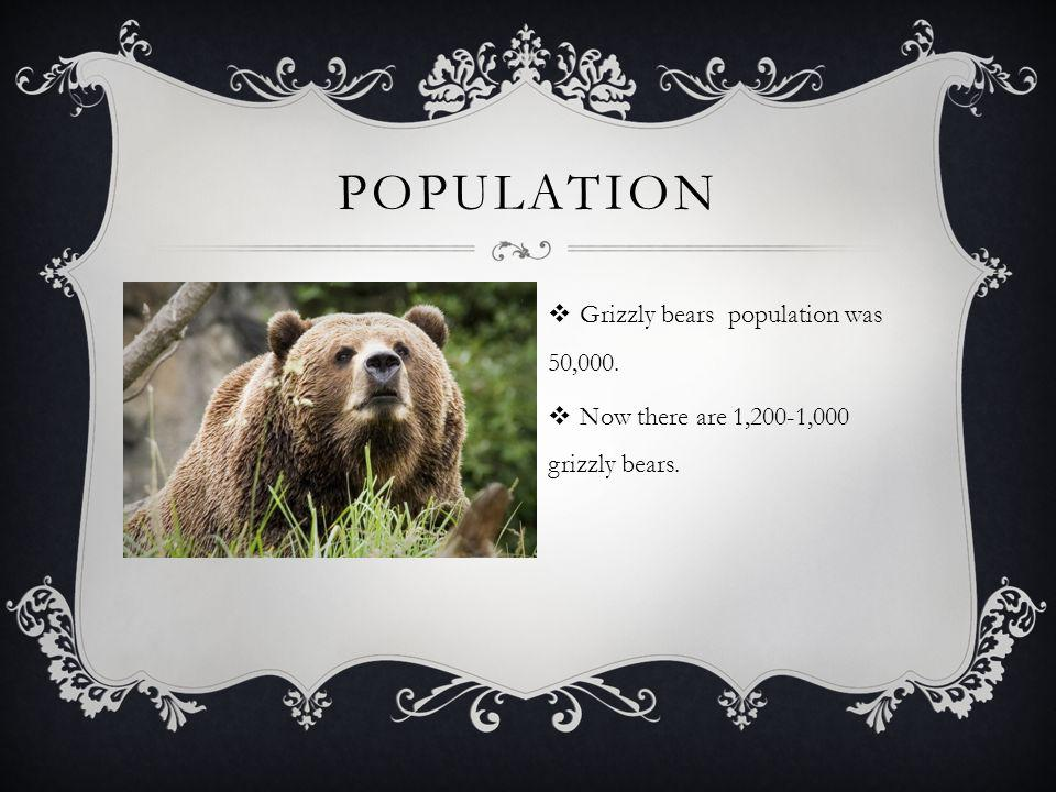  Grizzly bears are found in many different places from forests to mountains. HABITAT/RANGE