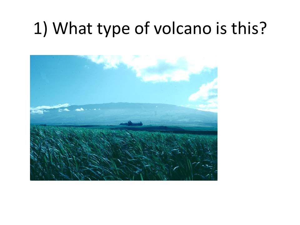 True or false ____________ 9.A caldera is a weak spot in the crust where magma comes through.