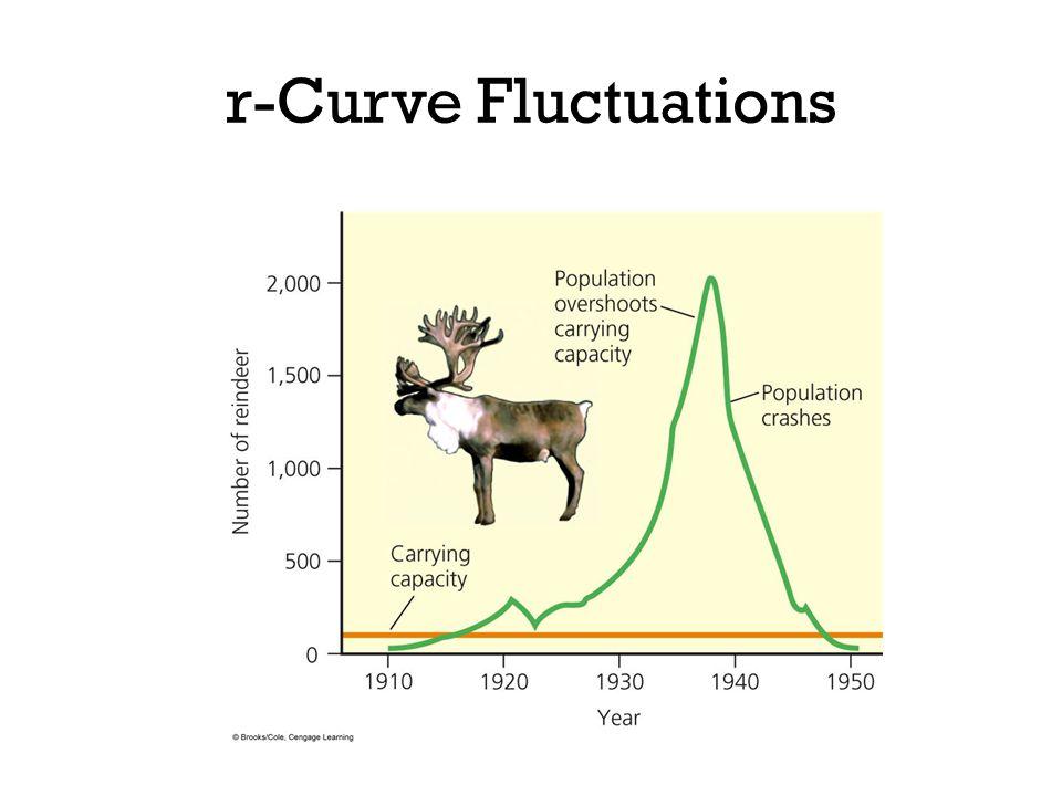 r-Curve Fluctuations