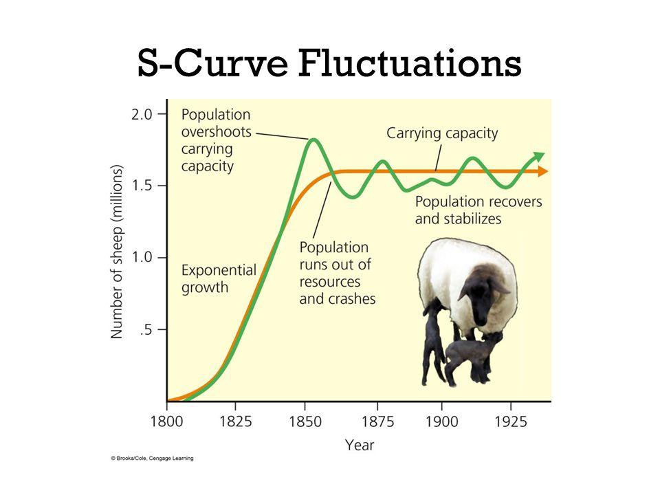 S-Curve Fluctuations