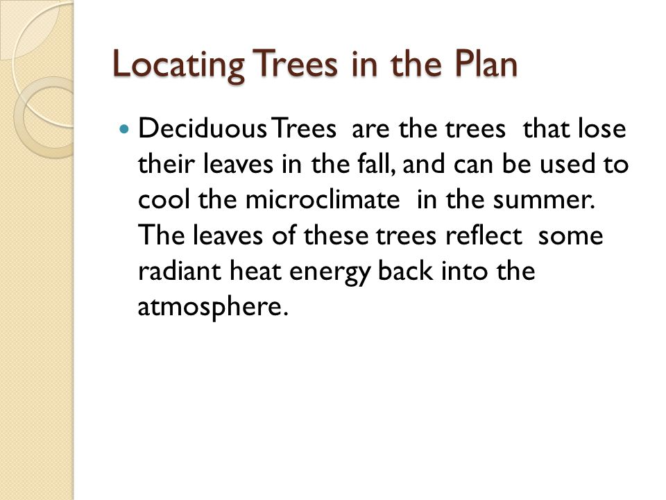 Locating Trees in the Plan Deciduous Trees are the trees that lose their leaves in the fall, and can be used to cool the microclimate in the summer. T