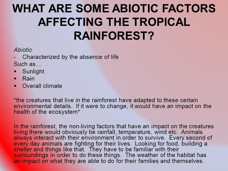 WHAT ARE SOME ABIOTIC FACTORS AFFECTING THE TROPICAL RAINFOREST.