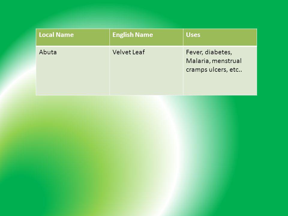Local NameEnglish NameUses AbutaVelvet LeafFever, diabetes, Malaria, menstrual cramps ulcers, etc..