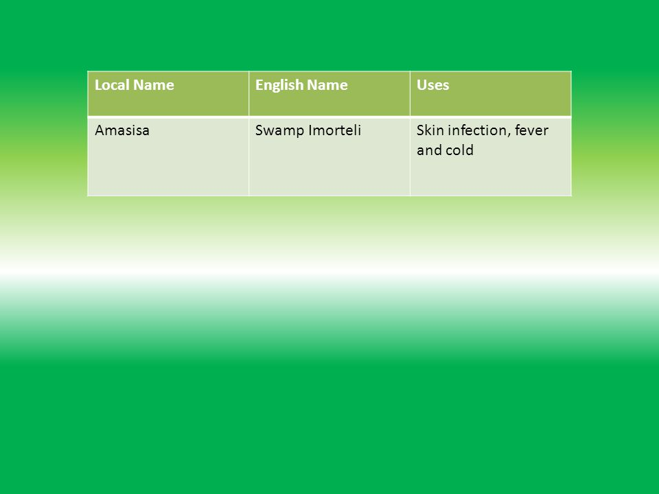 Local NameEnglish NameUses AmasisaSwamp ImorteliSkin infection, fever and cold