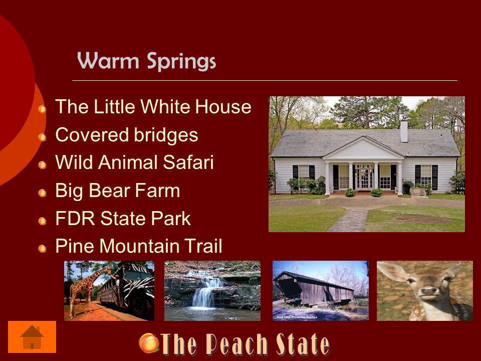 Warm Springs The Little White House Covered bridges Wild Animal Safari Big Bear Farm FDR State Park Pine Mountain Trail