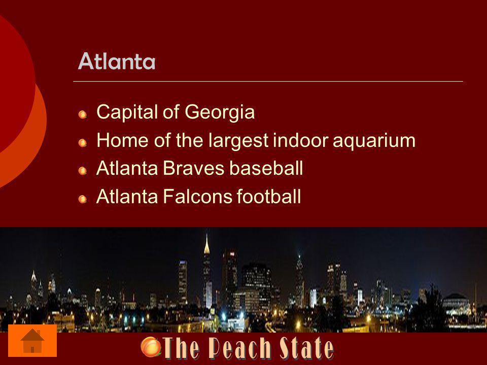 Atlanta Capital of Georgia Home of the largest indoor aquarium Atlanta Braves baseball Atlanta Falcons football