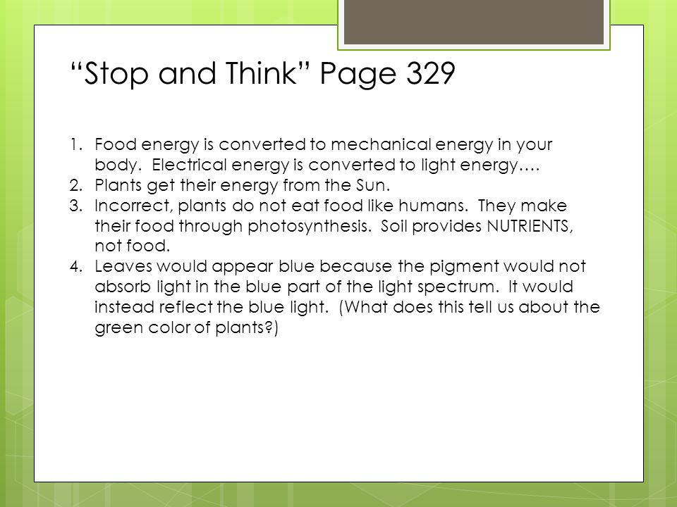 Reflect and Connect Page 334 1.Complete the following tasks about photosynthesis.