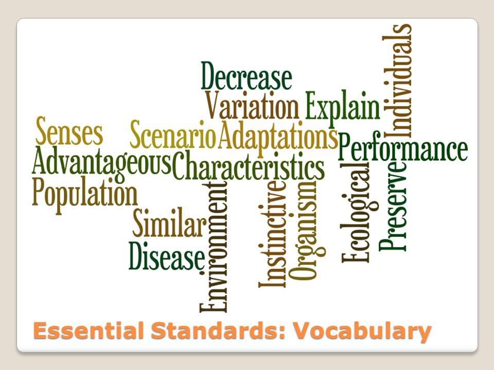Essential Standards: Vocabulary