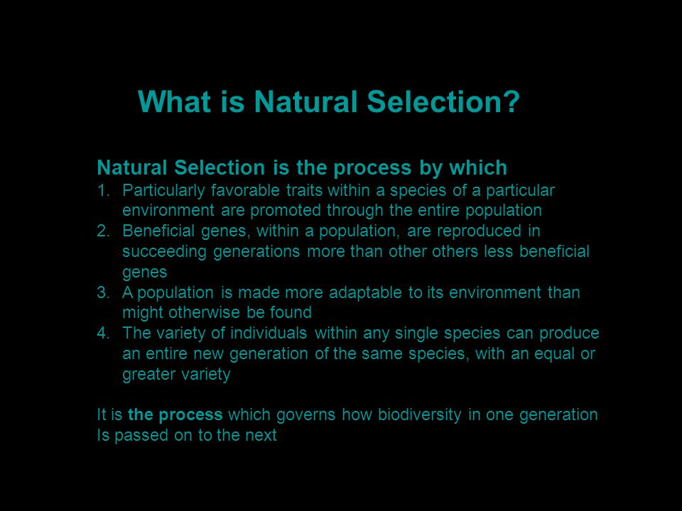 Anaticipated Blend Of Population vs Wilderness c 2050 What is Natural Selection.