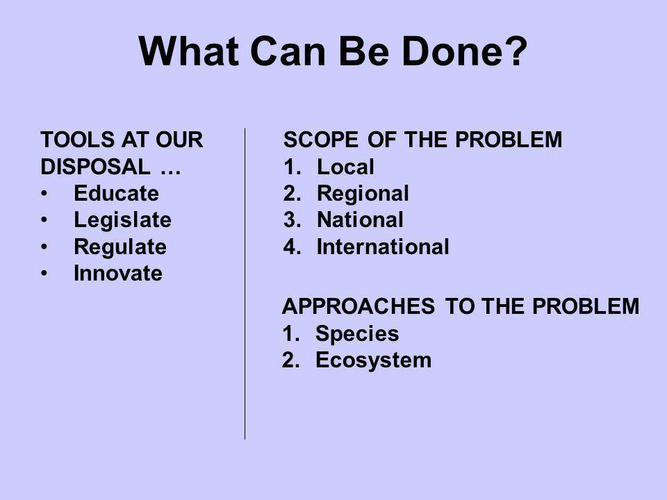 What Can Be Done? SCOPE OF THE PROBLEM 1.Local 2.Regional 3.National 4.International APPROACHES TO THE PROBLEM 1.Species 2.Ecosystem TOOLS AT OUR DISP