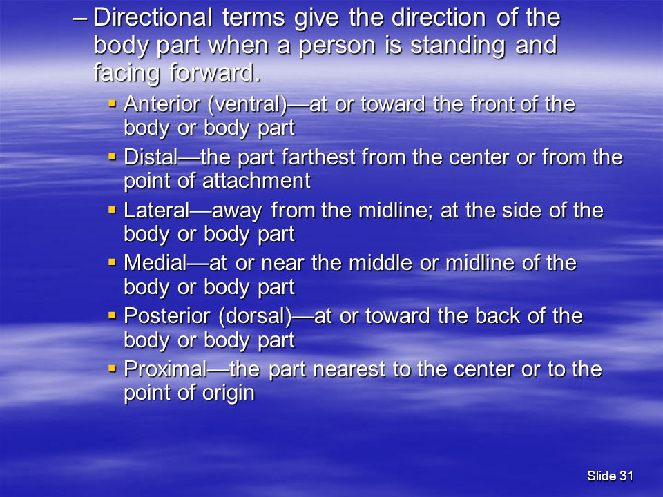 –Directional terms give the direction of the body part when a person is standing and facing forward.  Anterior (ventral)—at or toward the front of th