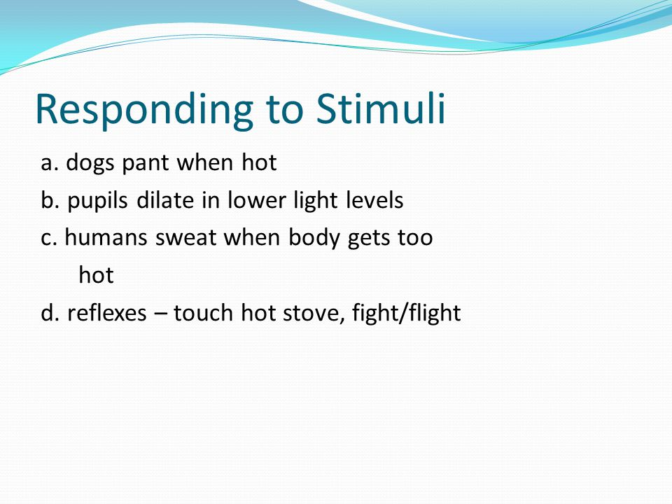 Responding to Stimuli a. dogs pant when hot b. pupils dilate in lower light levels c. humans sweat when body gets too hot d. reflexes – touch hot stov