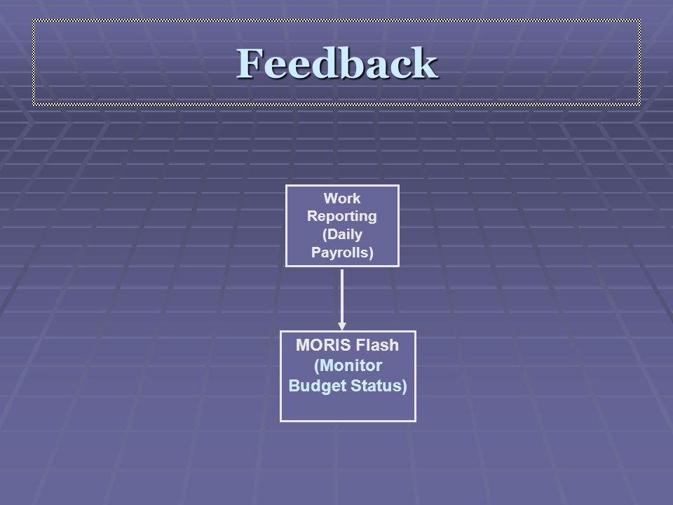 Feedback Work Reporting (Daily Payrolls) MORIS Flash (Monitor Budget Status)