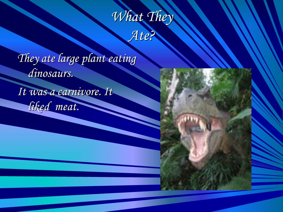 What They Ate? They ate large plant eating dinosaurs. It was a carnivore. It liked meat.