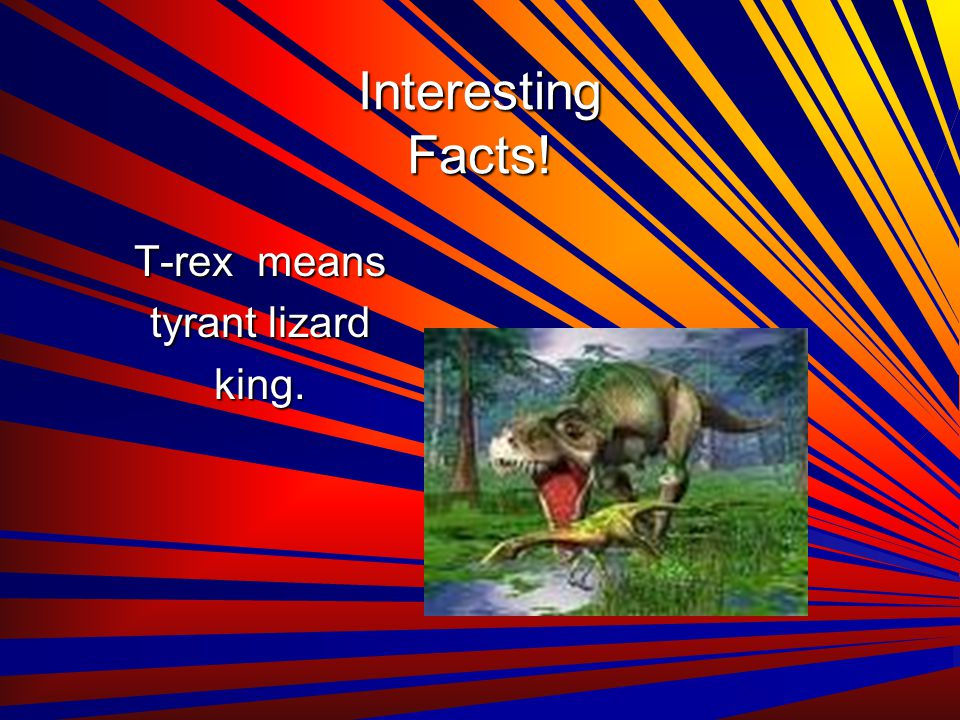 Interesting Facts! T-rex means tyrant lizard king.