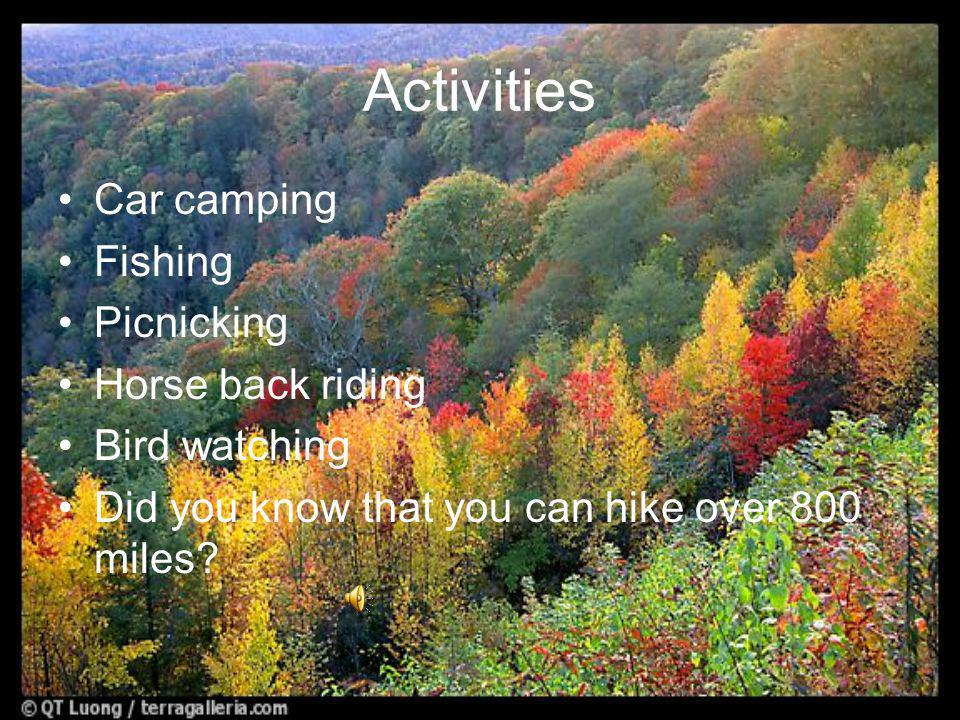 Activities Car camping Fishing Picnicking Horse back riding Bird watching Did you know that you can hike over 800 miles?