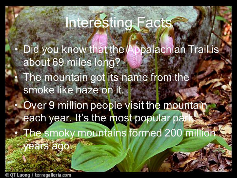 Interesting Facts Did you know that the Appalachian Trail is about 69 miles long.