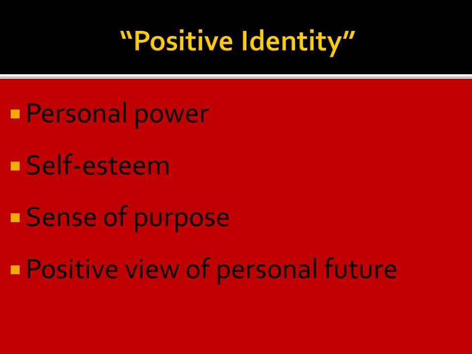  Personal power  Self-esteem  Sense of purpose  Positive view of personal future