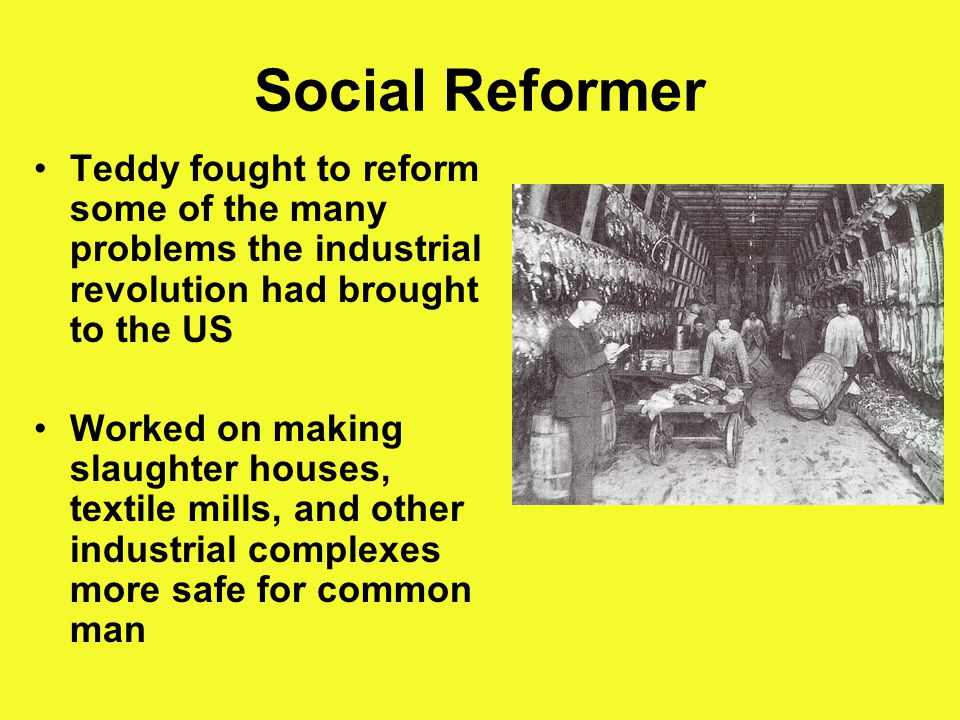 Social Reformer Teddy fought to reform some of the many problems the industrial revolution had brought to the US Worked on making slaughter houses, textile mills, and other industrial complexes more safe for common man