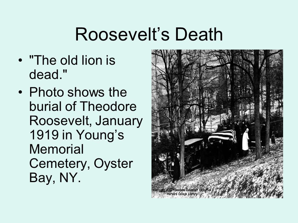 Roosevelt's Death The old lion is dead. Photo shows the burial of Theodore Roosevelt, January 1919 in Young's Memorial Cemetery, Oyster Bay, NY.
