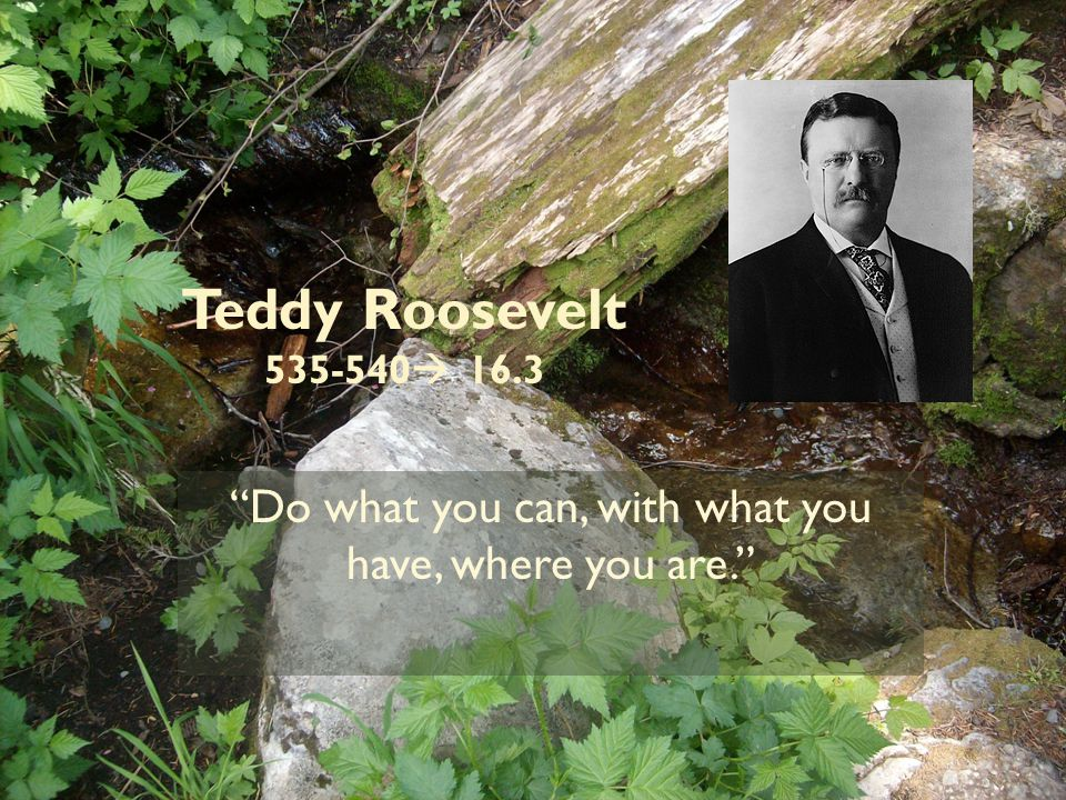 Teddy Roosevelt 535-540  16.3 Do what you can, with what you have, where you are.