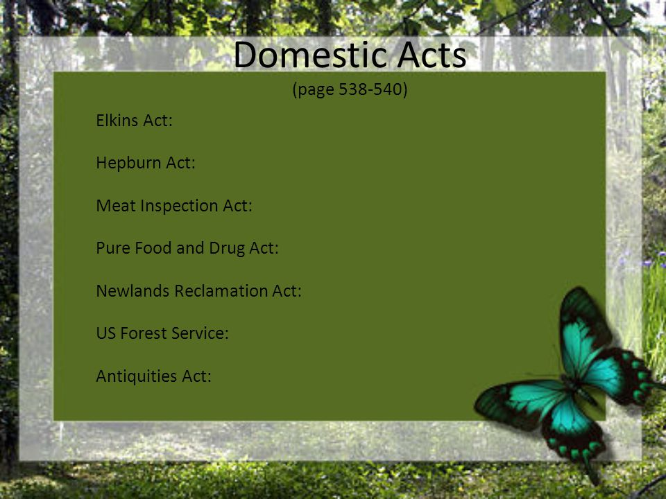 Domestic Acts (page 538-540) Elkins Act: Hepburn Act: Meat Inspection Act: Pure Food and Drug Act: Newlands Reclamation Act: US Forest Service: Antiquities Act: