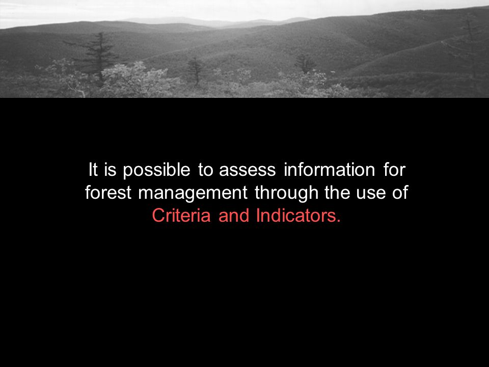 It is possible to assess information for forest management through the use of Criteria and Indicators.