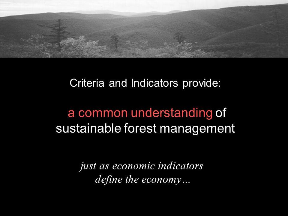 just as economic indicators define the economy…