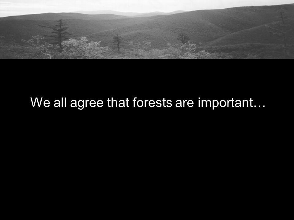 We all agree that forests are important…