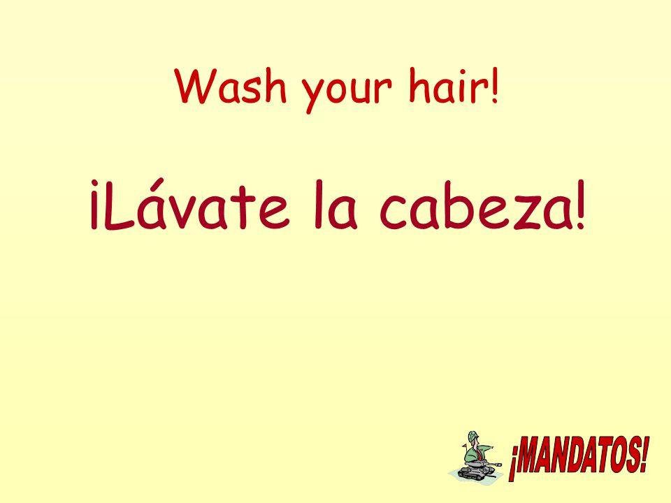 Wash your hair! ¡Lávate la cabeza!