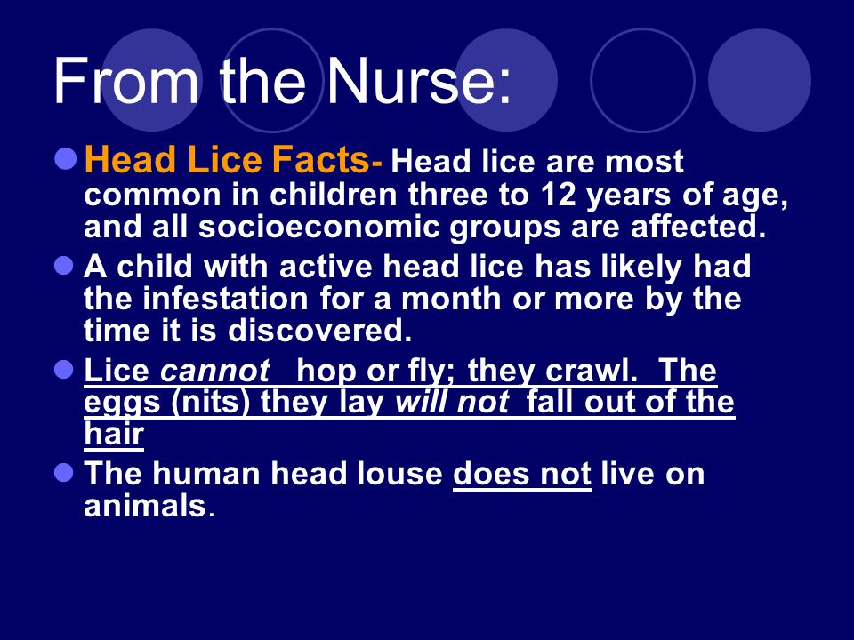 From the Nurse: Head Lice Facts - Head lice are most common in children three to 12 years of age, and all socioeconomic groups are affected.