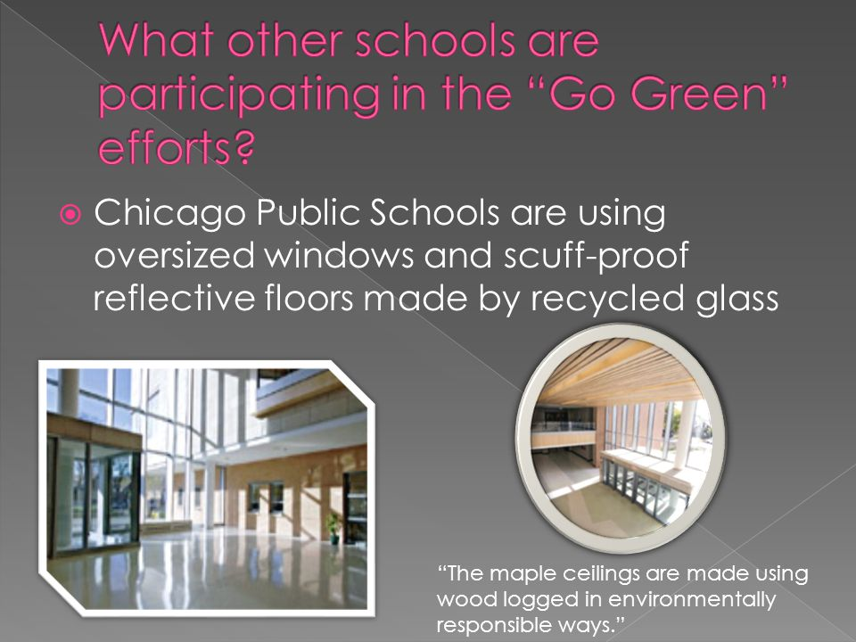  Chicago Public Schools are using oversized windows and scuff-proof reflective floors made by recycled glass The maple ceilings are made using wood logged in environmentally responsible ways.