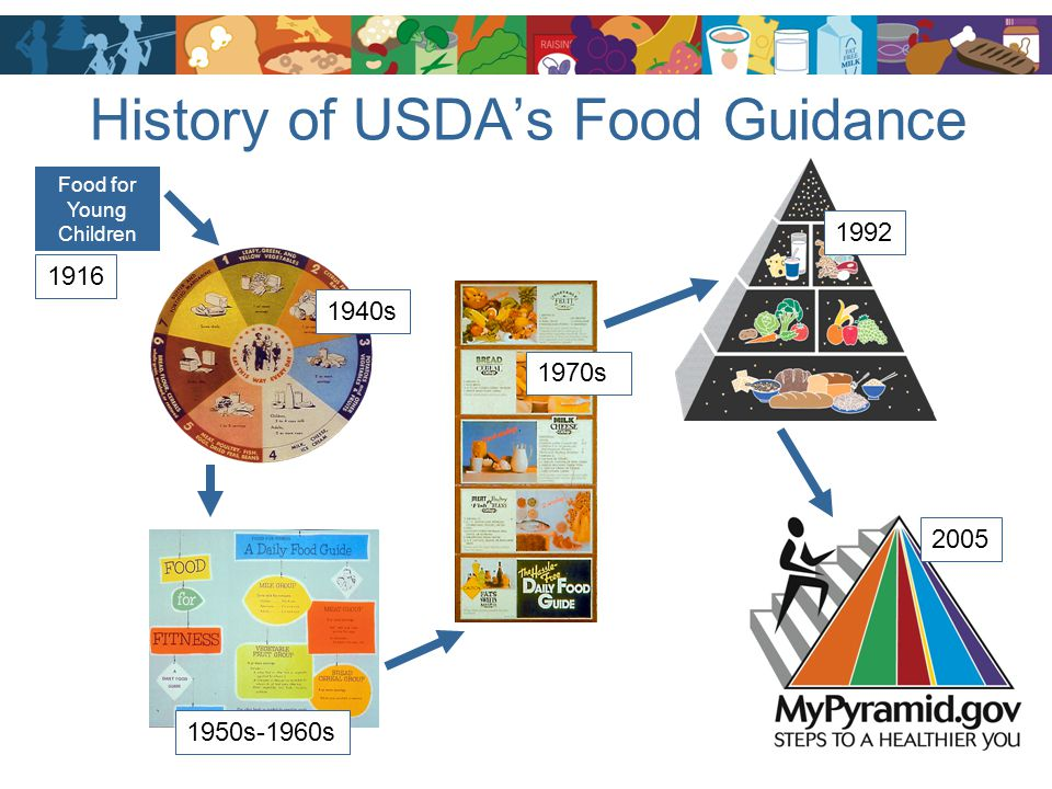 History of USDA's Food Guidance 1940s 1950s-1960s 1970s 1992 2005 Food for Young Children 1916