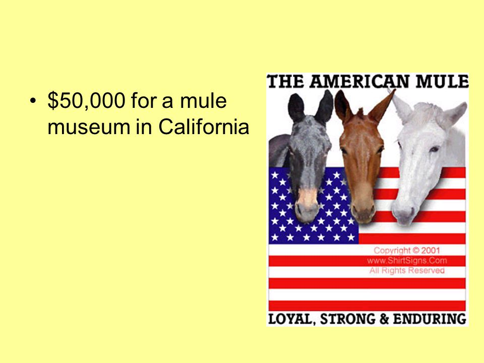 $50,000 for a mule museum in California